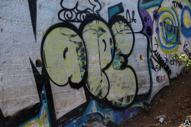 ape-is-dapper-los-angeles-nazi-yards-graffiti-12