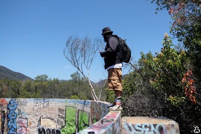 ape-is-dapper-los-angeles-nazi-yards-graffiti-14
