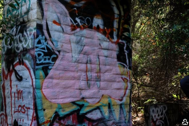 ape-is-dapper-los-angeles-nazi-yards-graffiti-5